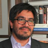 Prof. Dr. Enrique Aliste
